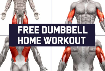 Free dumbbell home workout plan