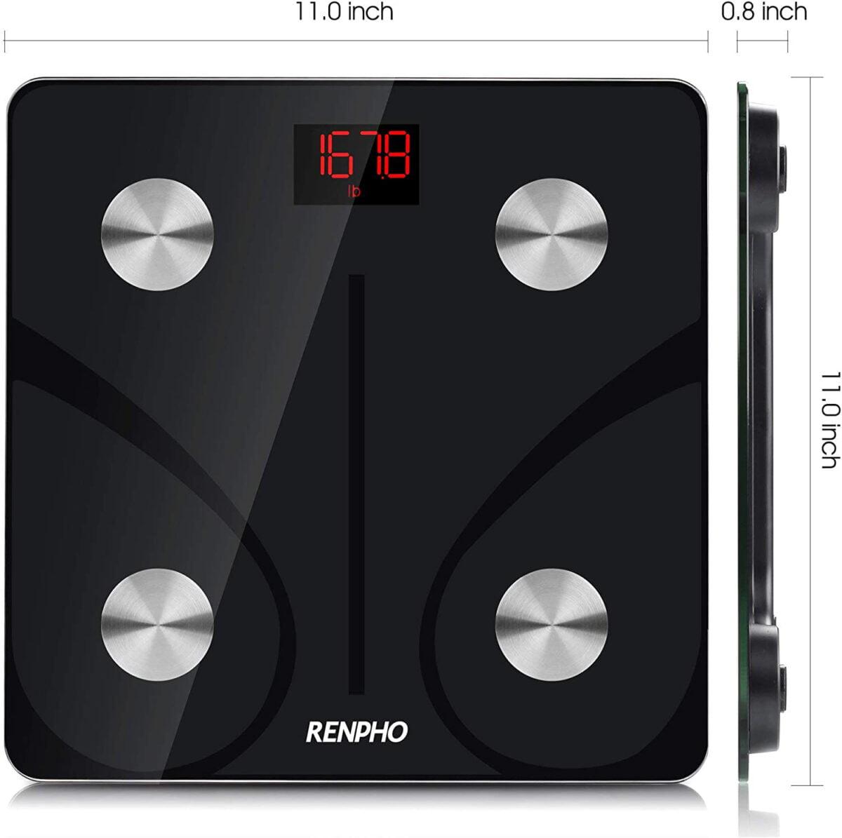 RENPHO Body Fat Scale dimensions